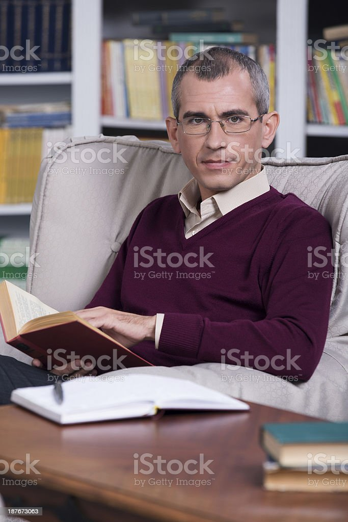 Handsome successful lawyer portrait royalty-free stock photo