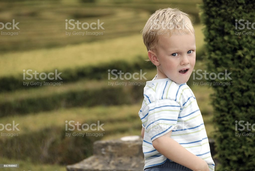 Handsome Young Boy stock photo