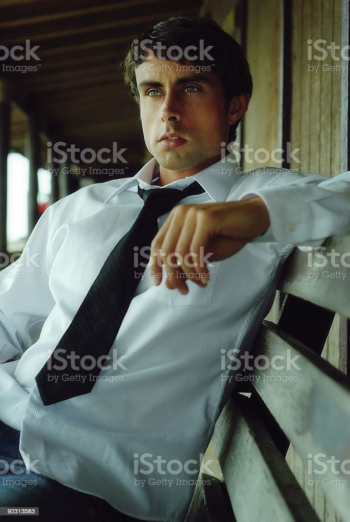 Handsome Young Business Man royalty-free stock photo