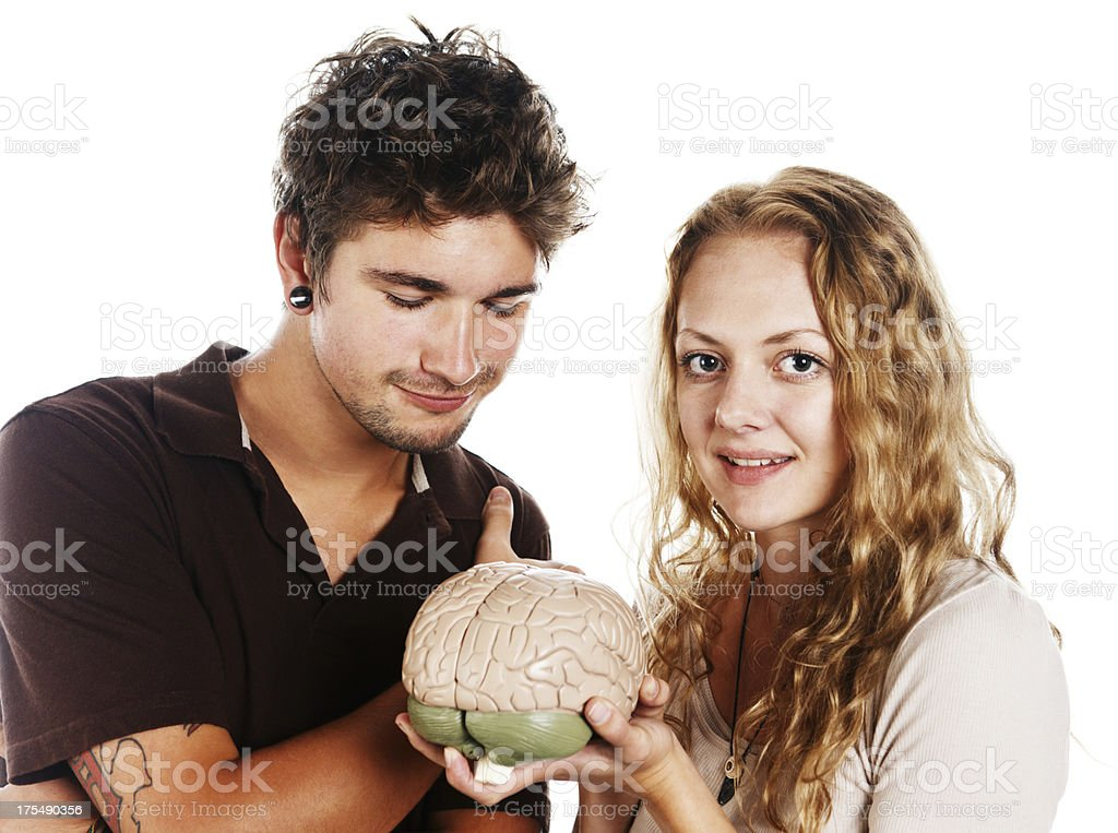Handsome young couple fascinated by model of human brain stock photo