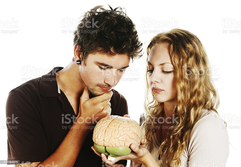Handsome young couple study model of human brain intrigued stock photo