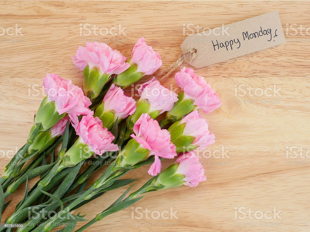 Handwriting Happy Monday and pink Carnation flower 3 stock photo