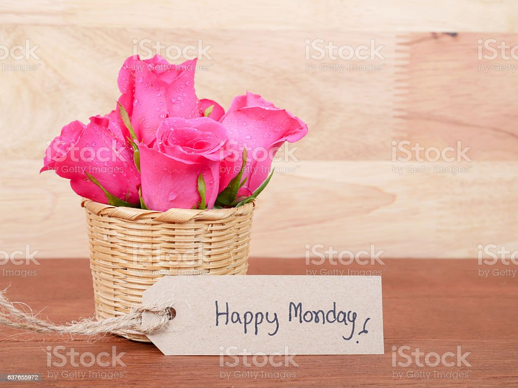 Handwriting Happy Monday and pink rose flower 4 stock photo