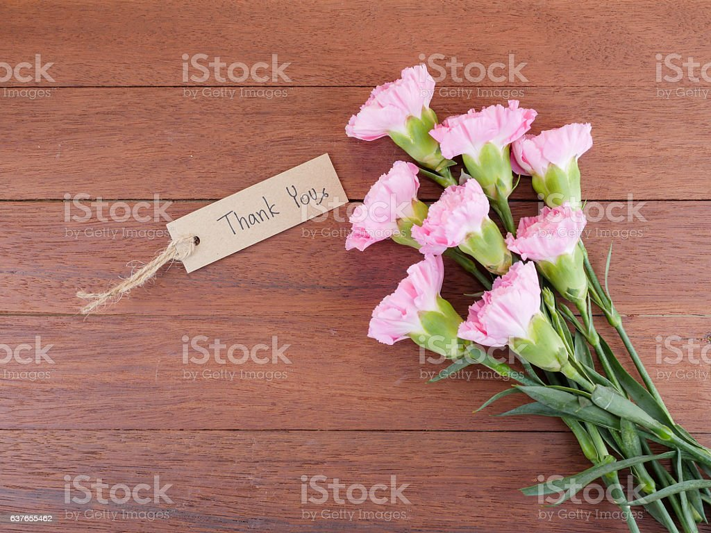 Handwriting Thank you and Carnation flower 1 stock photo