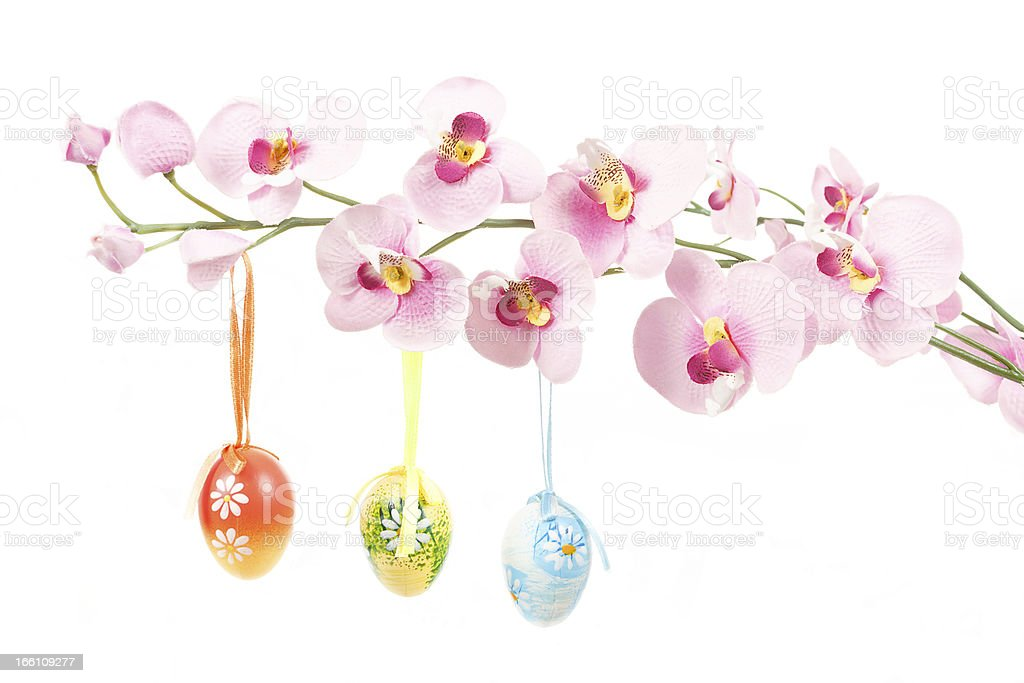 hanged bright color easter eggs with bows on spring flower royalty-free stock photo