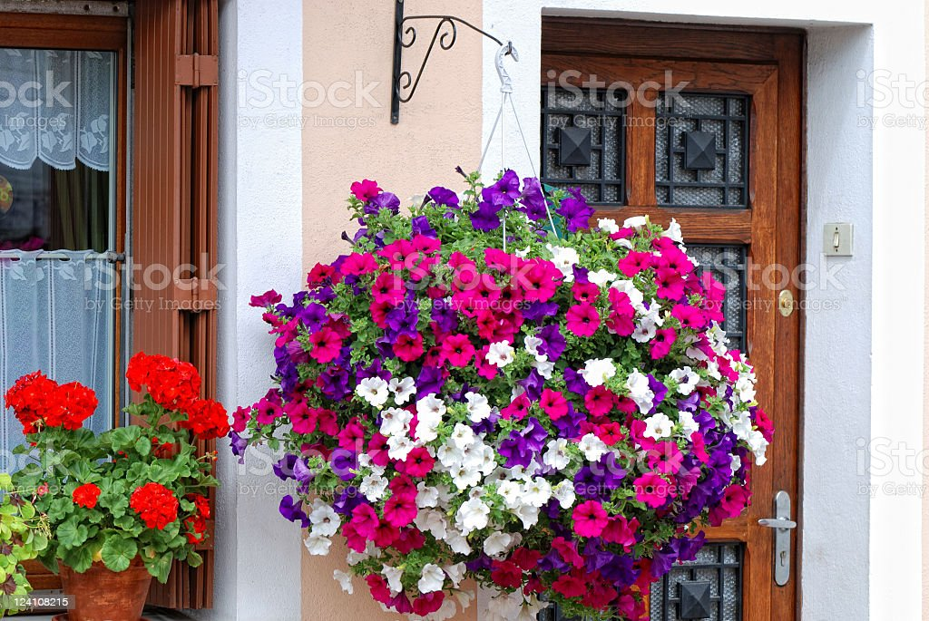 Hanging basket of colorful petunias outside of a home stock photo