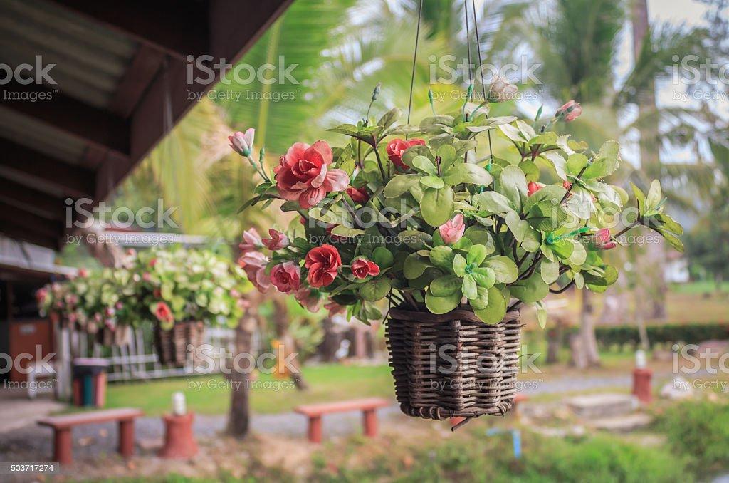 Hanging basket of flowers vintage stock photo
