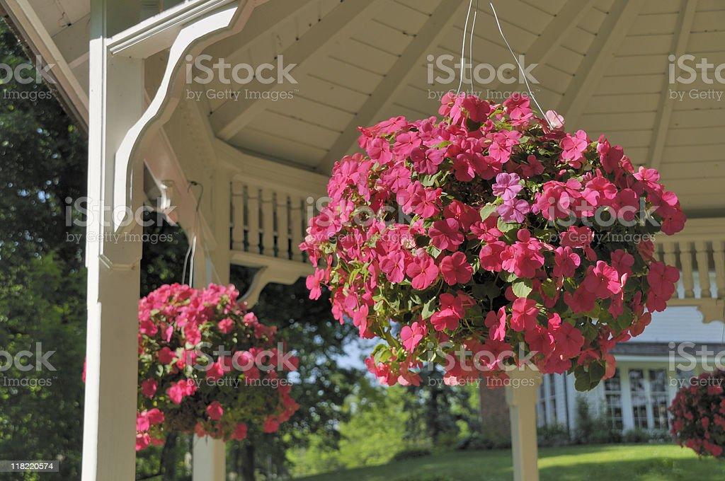Hanging Baskets stock photo