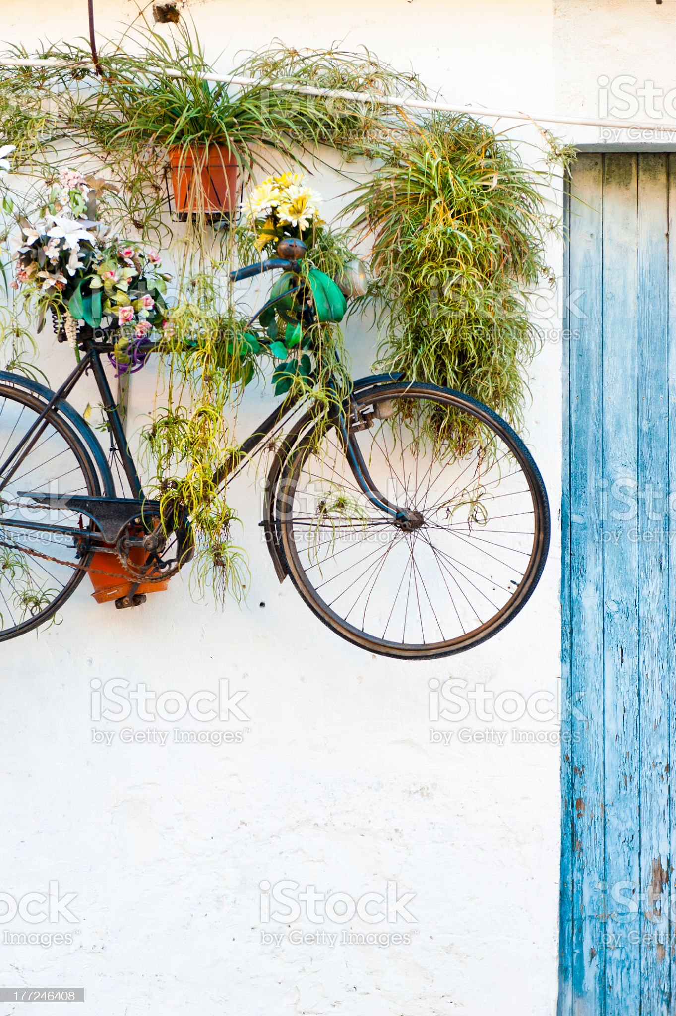 Hanging bike royalty-free stock photo