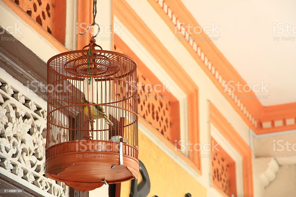 Hanging Bird Cage stock photo