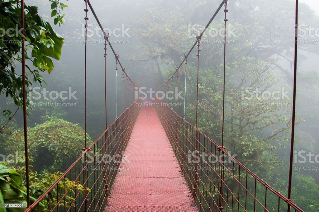 Hanging bridge in Monteverde stock photo