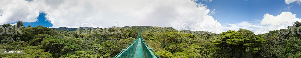 Hanging bridge in the forest of Costa Rica stock photo