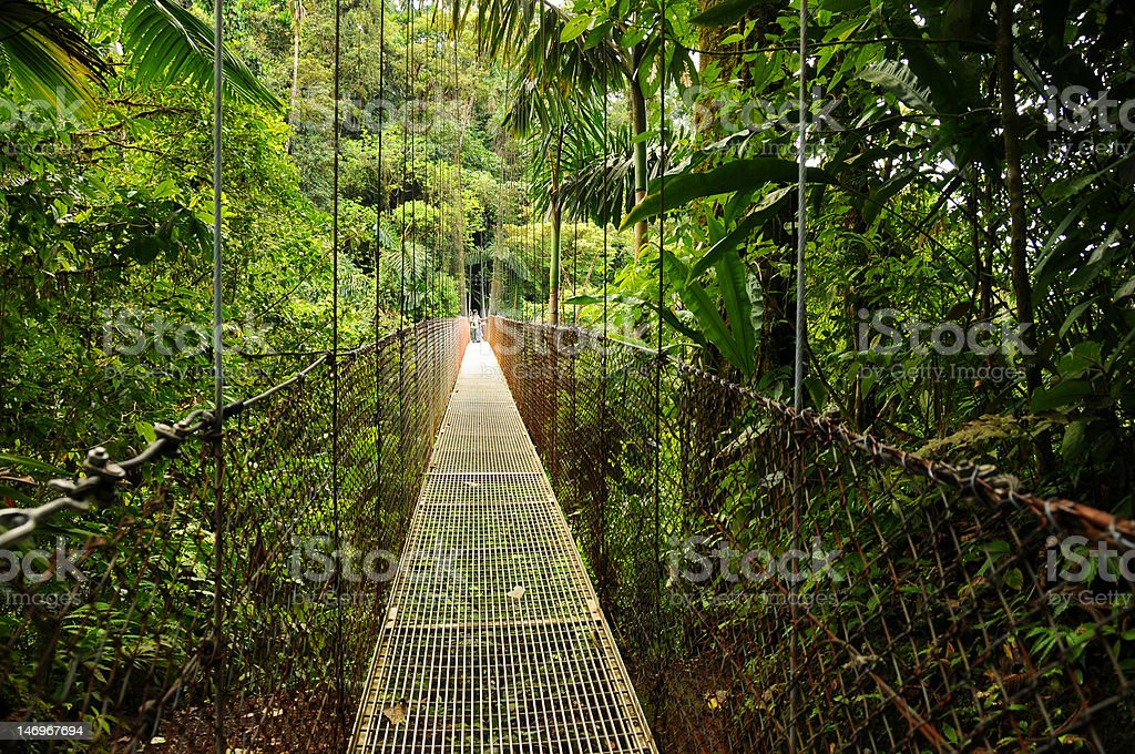Hanging Bridges in Costa Rica's Arenal National Park royalty-free stock photo