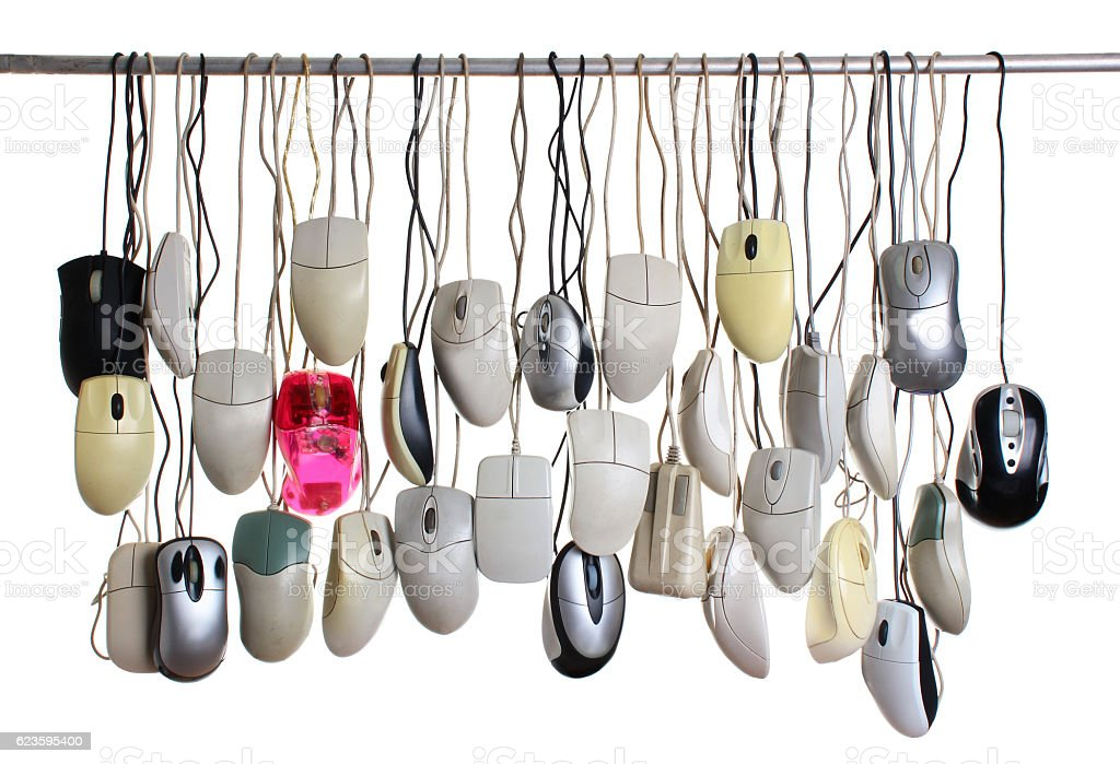 Hanging computer mice isolated on white background stock photo