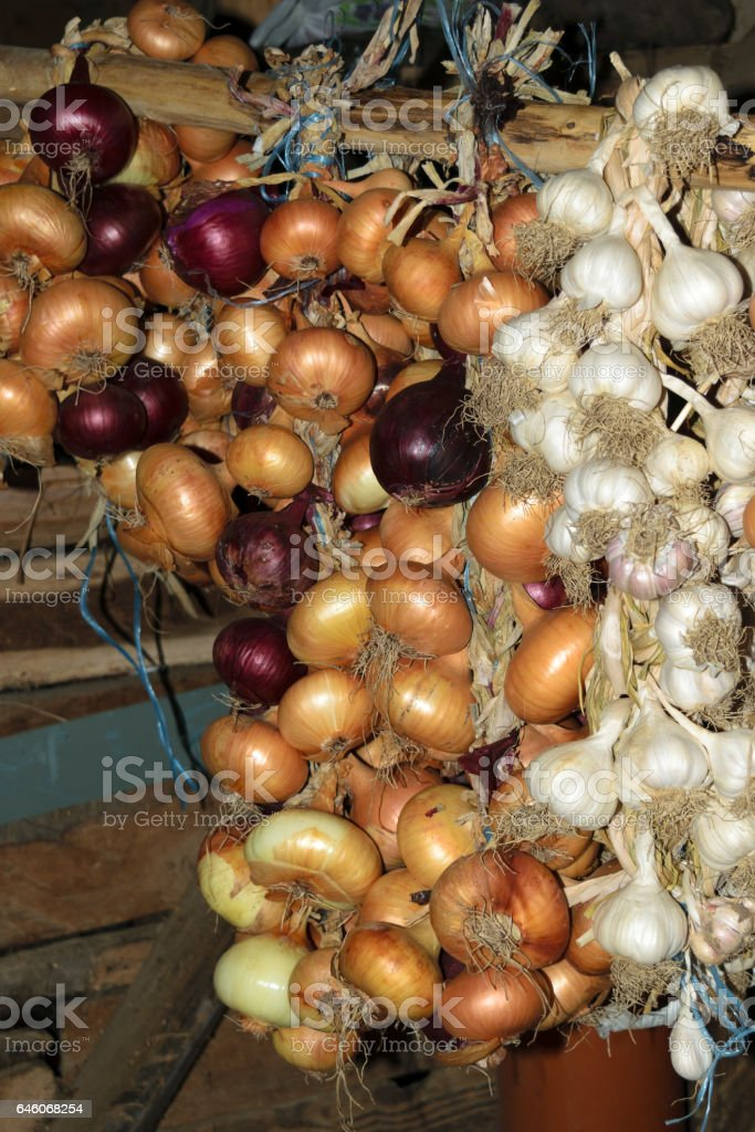 Hanging crop of red and yellow onion and white garlic stock photo