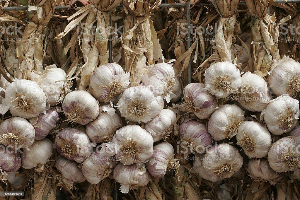 Hanging garlic stock photo