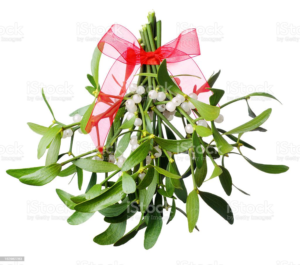 Hanging green mistletoe with a red bow stock photo