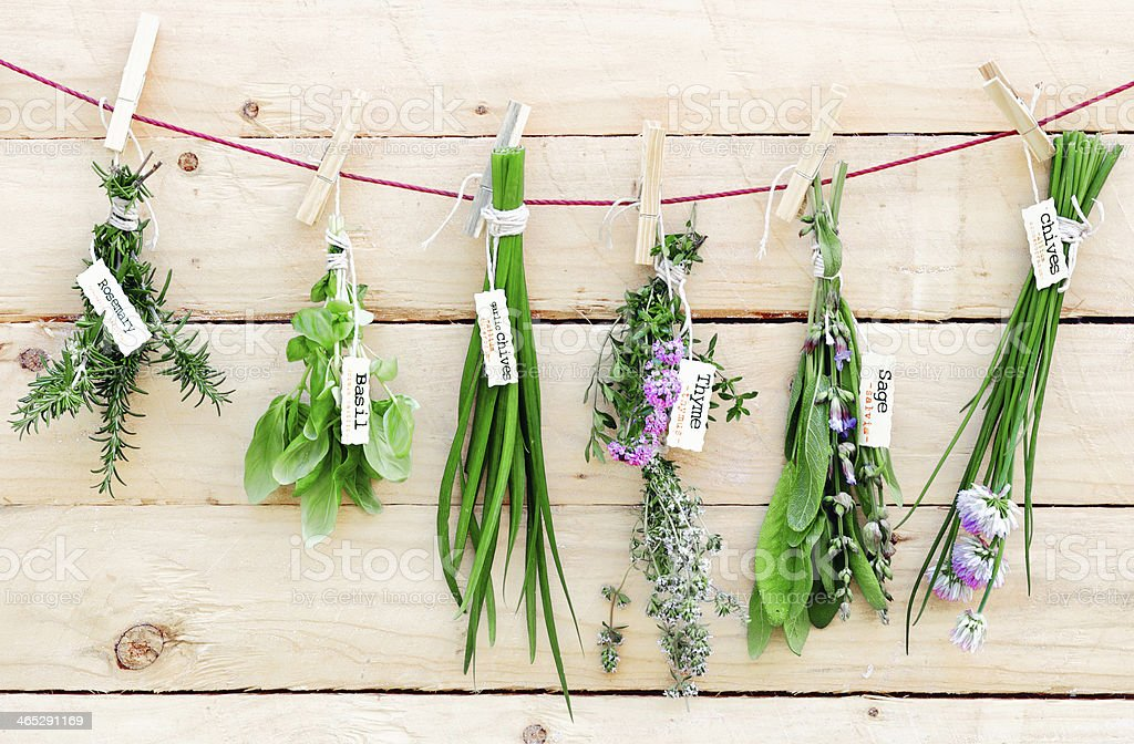 Hanging Herbs stock photo