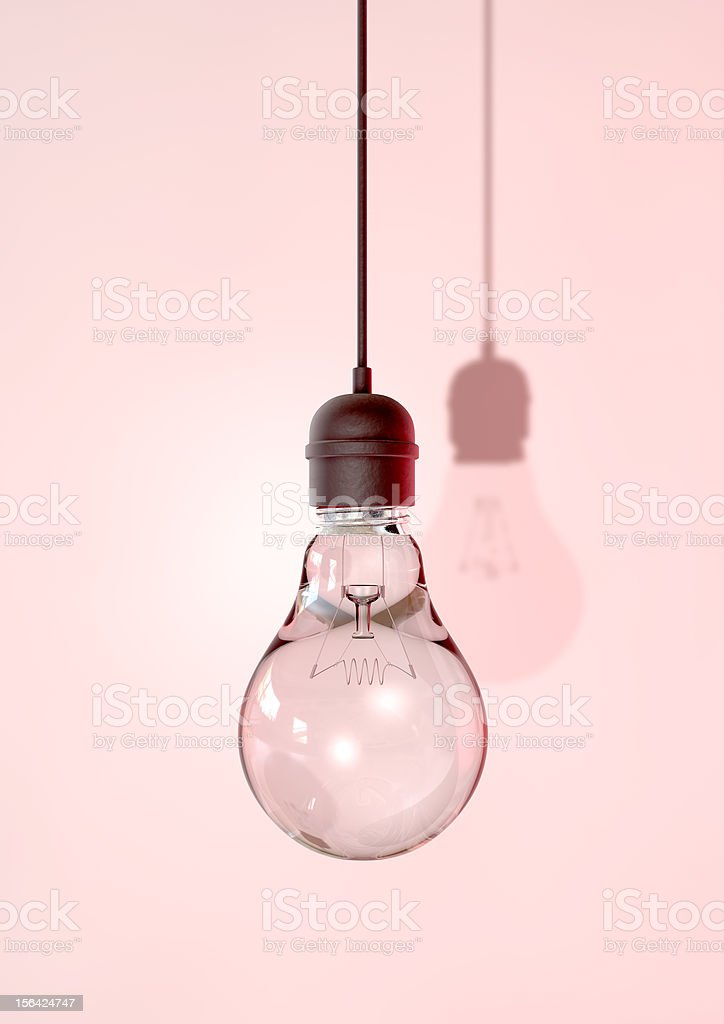 Hanging Light Bulb And Fitting royalty-free stock photo