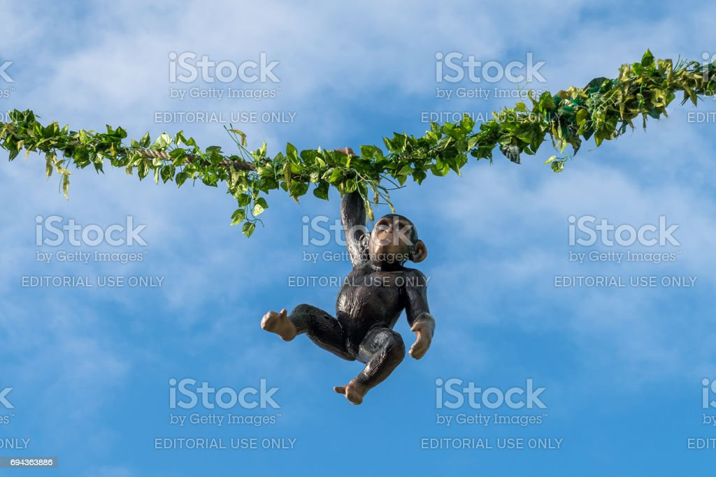 Hanging monkey on a rope at a folk festival stock photo