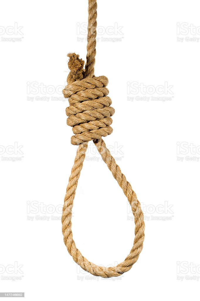 Hanging noose on white background stock photo