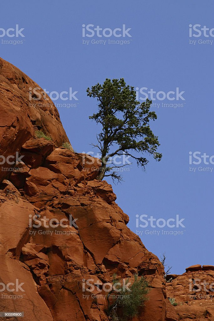 Hanging on stock photo