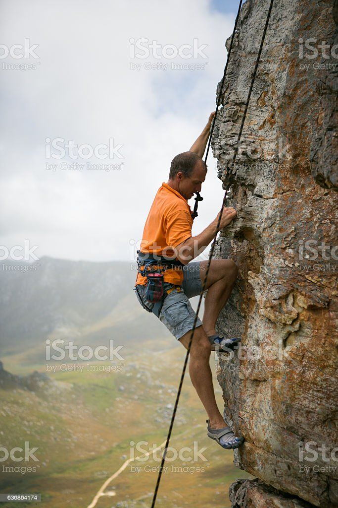 Hanging onto the wall! stock photo