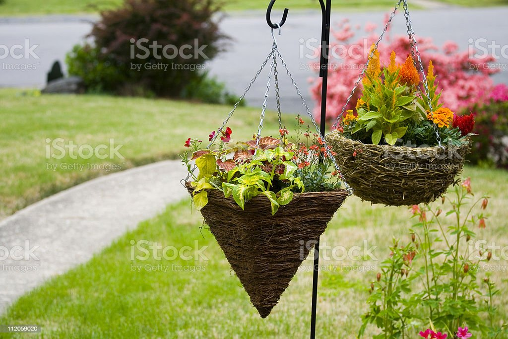 Hanging Planters stock photo