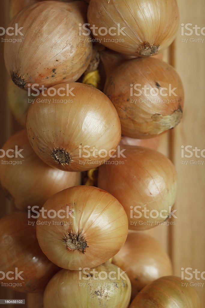 hanging strings of white onions royalty-free stock photo