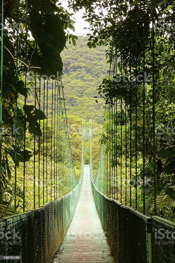 Hangingbridge in Monteverde stock photo