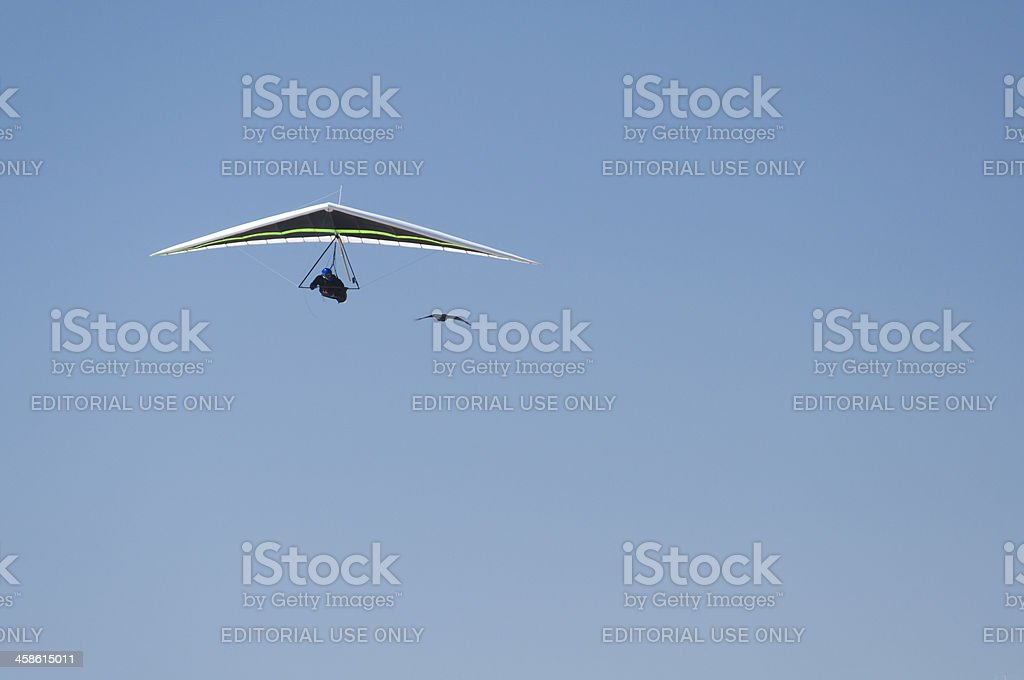 Hanglider following crow royalty-free stock photo