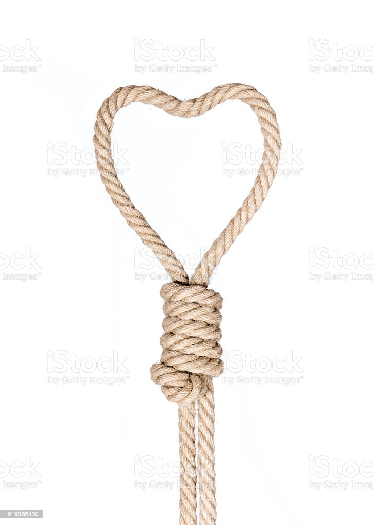 Hangman's noose. stock photo