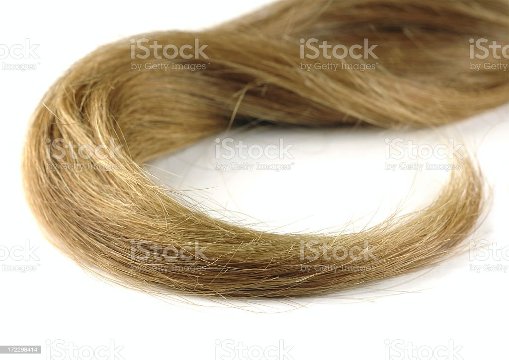 Hank of hair royalty-free stock photo