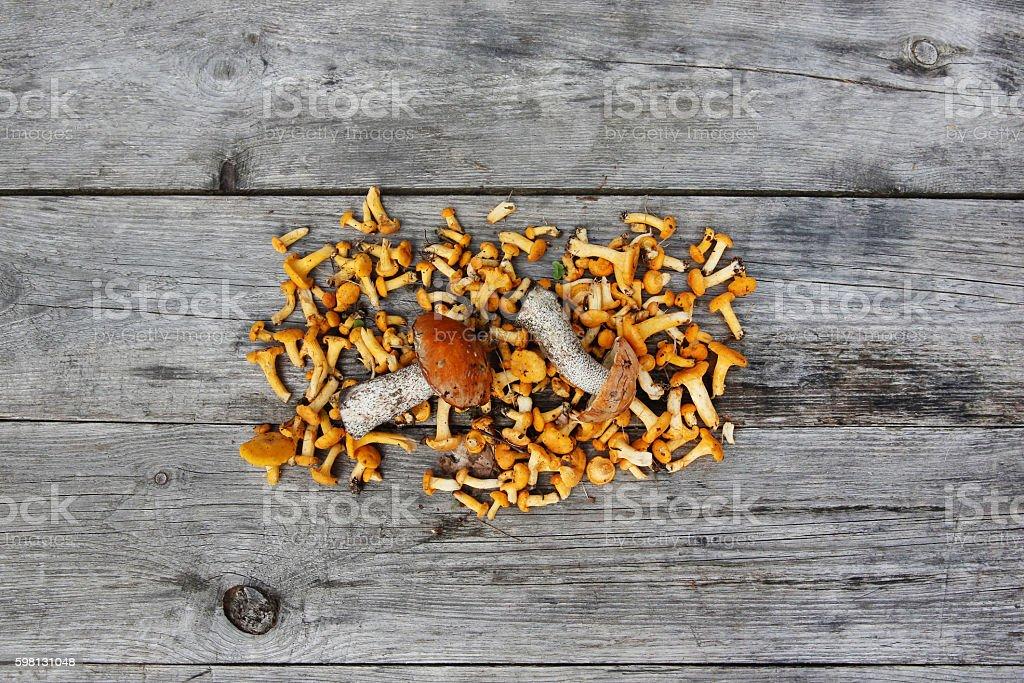 Сhanterelle mushrooms on a rustic table stock photo