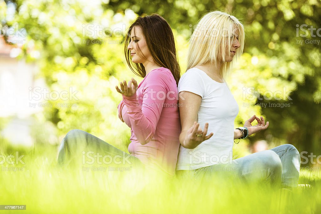 Happiness friends on the park doing yoga royalty-free stock photo
