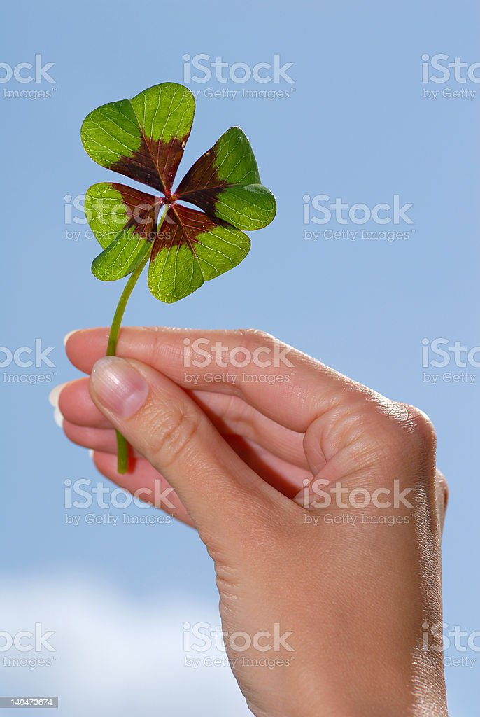 Happiness in your hands royalty-free stock photo