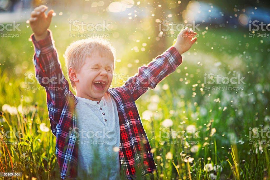 Happiness of a little boy in dandelion field stock photo