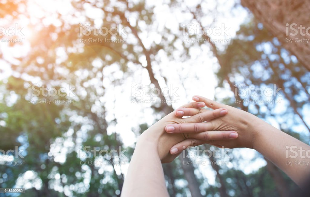 Happiness, relaxation with early morning concept. Woman hands up in fresh air stock photo