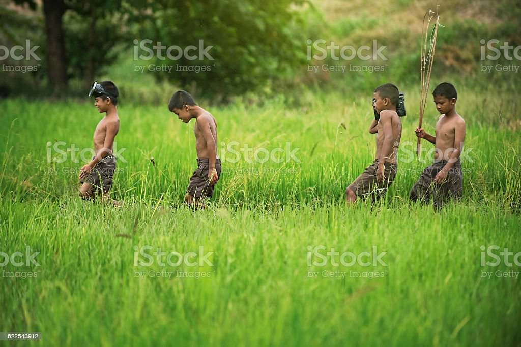 Happy Asian children farmer on green rice field. stock photo