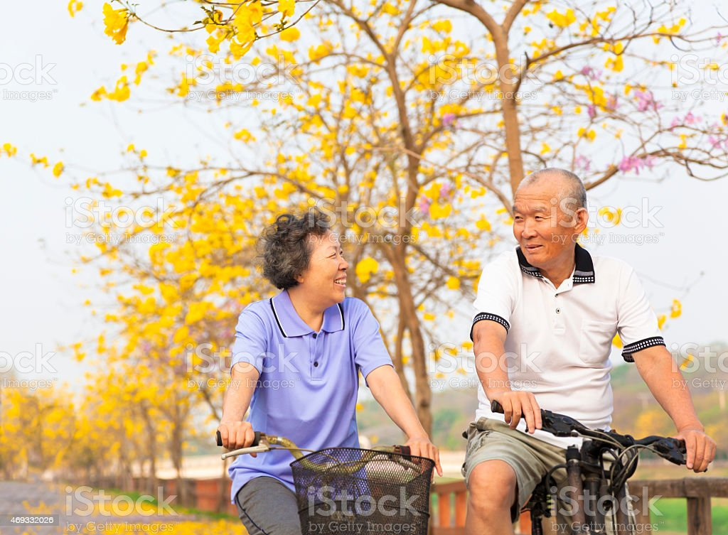 happy asian senior couple ride on bicycle  in the park stock photo