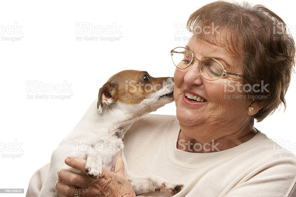Happy Attractive Senior Woman with Puppy on White royalty-free stock photo