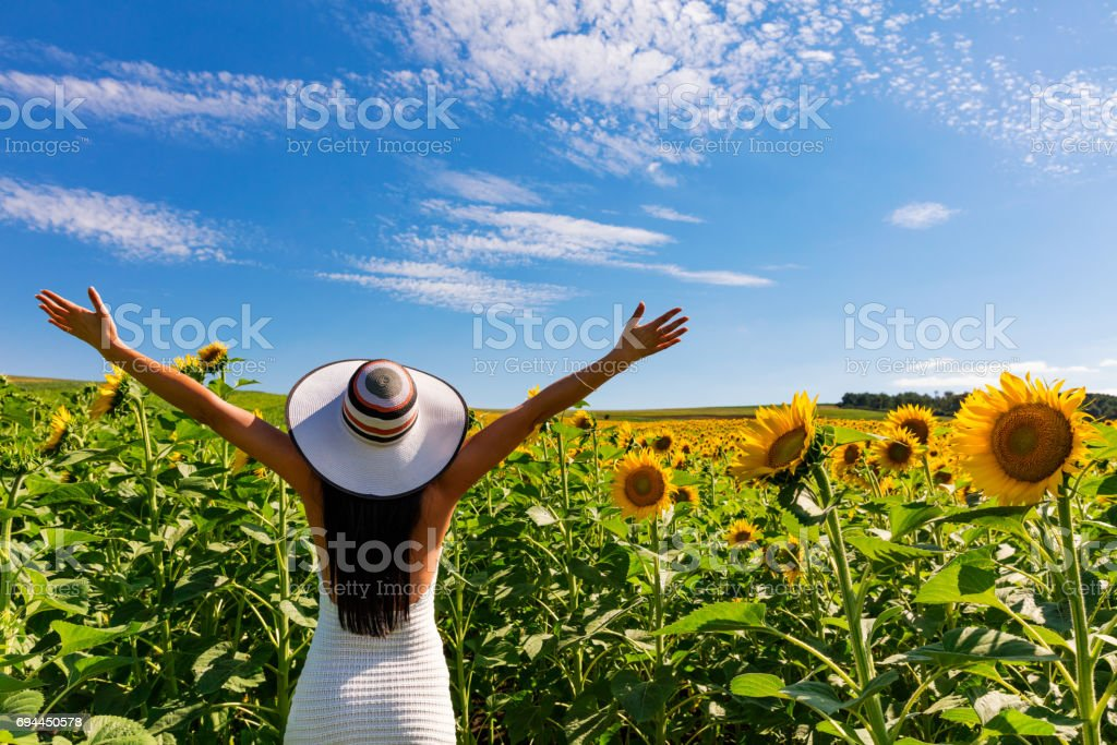 Happy attractive woman in sunflower field stock photo