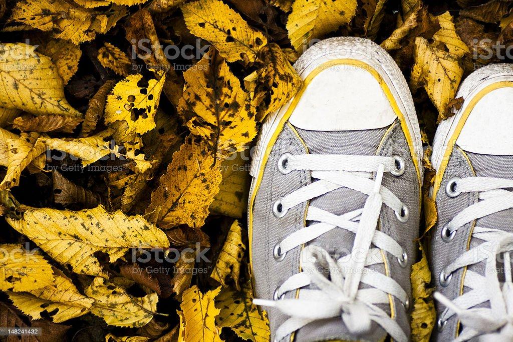 happy autumn royalty-free stock photo