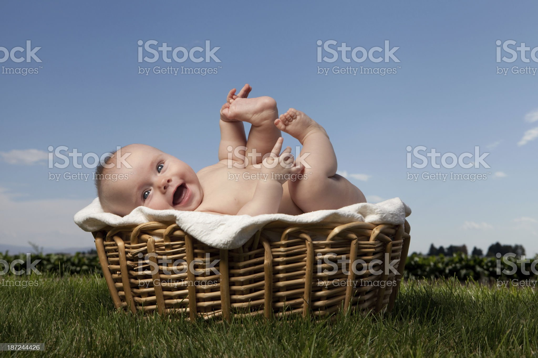 Happy Baby Outdoors on Grass in Basket with Sky royalty-free stock photo