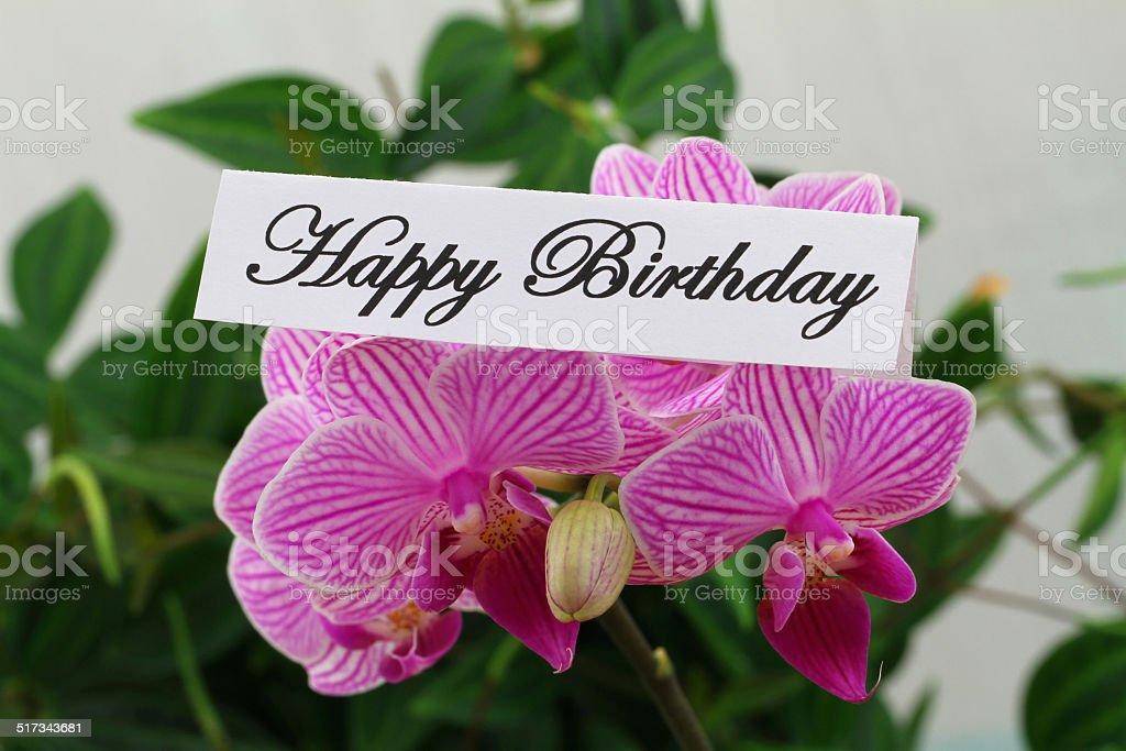 carte de joyeux anniversaire avec orchidée rose stock photo libre