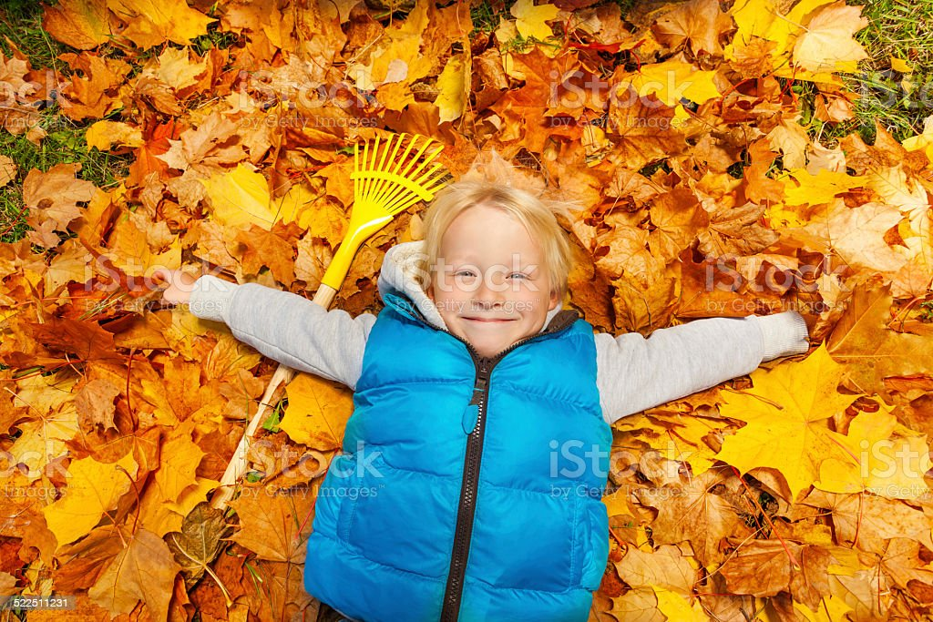 Happy blond boy laying on the autumn leaves stock photo