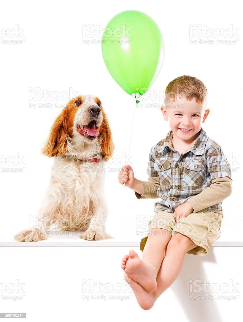 Happy boy and  dog Spaniel stock photo