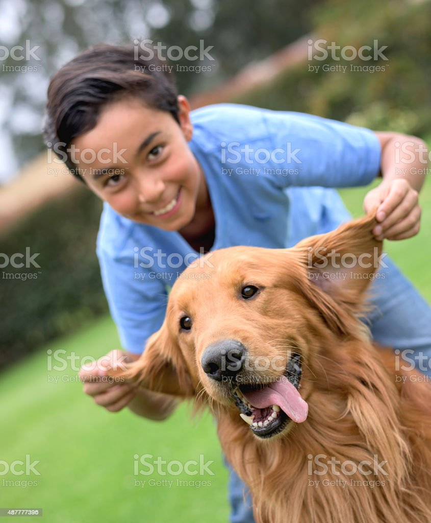 Happy boy playing his dog stock photo