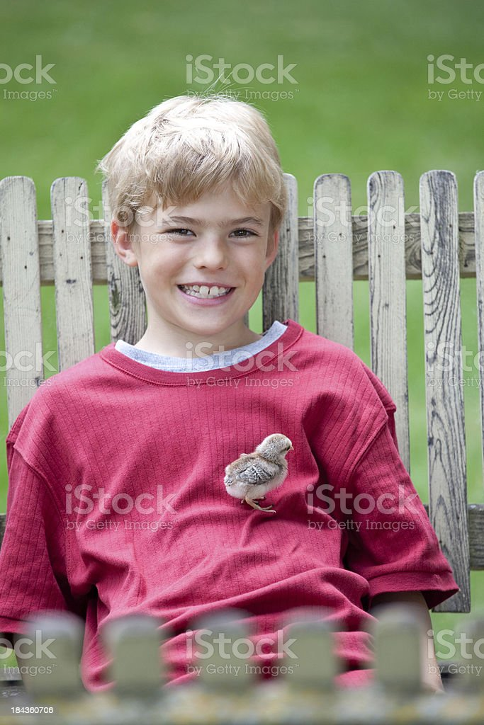 Happy Boy With Chick royalty-free stock photo