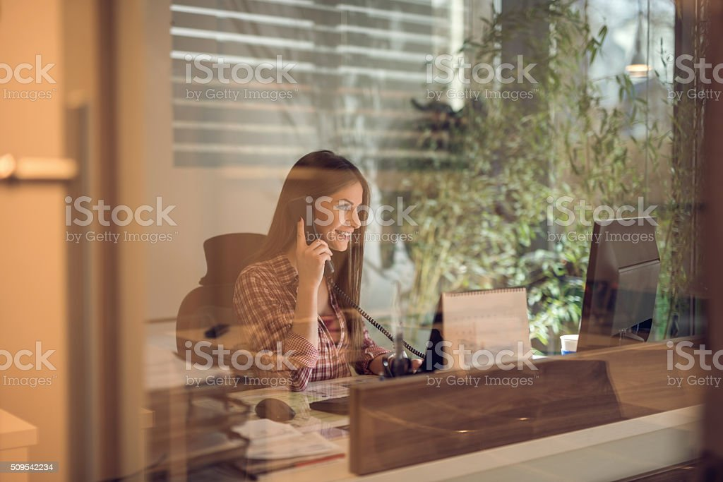 Happy businesswoman on the phone in the office. stock photo